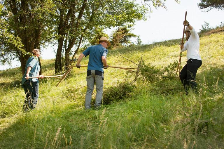 Landwirt*innen bei der Landschaftspflege auf einem Berg